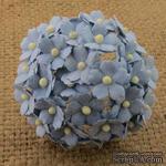 Цветочки  Sweetheart, цвет голубой, 15мм, 10 шт. - ScrapUA.com
