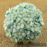 Цветочки  Sweetheart, цвет мятный 15мм, 10 шт. - ScrapUA.com