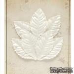 Набор листиков из шелковичной бумаги, 7 шт., роза, мелкие, белые - ScrapUA.com