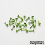 Набор брадс, 25 шт., зеленые - ScrapUA.com