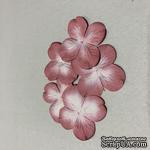 Гортензия, розово-белая, диаметр 40 мм, 20 шт - ScrapUA.com