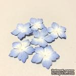 Голубые цветочки с острыми лепестками, 20 шт - ScrapUA.com