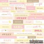 Лист односторонней скрапбумаги от Scrapmir - Inscriptions (ENG) из коллекции Doll Baby, 30x30 см - ScrapUA.com