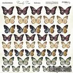 Лист двусторонней бумаги от Scrapmir -  Бабочки - Family Tree, 20х20см  - ScrapUA.com