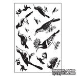 "Акриловые штампы от Maya Road ""Ornate Feathered Friends"", 10х15,2 см, 13 шт. - ScrapUA.com"