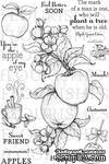 Набор акриловых штампов от Flourishes - Apple of my Eye - ScrapUA.com