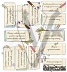 Лист с надписями про школу, дизайн Елены Виноградовой, 19.5х25 - ScrapUA.com