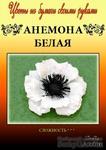 Набор тутовой бумаги для создания цветов - анемона белая - ScrapUA.com
