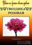 Набор тутовой бумаги для создания цветов - гвоздика розовая - ScrapUA.com