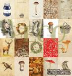 """Набор карточек от EcoPaper - """"Осенний лес"""", 20 шт - ScrapUA.com"""