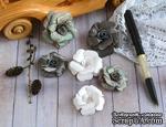 Набор цветов Freetany Flowers – Подземелье - ScrapUA.com