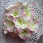 Гортензии из фоамирана,  диаметр 35 мм, цвет белый с розовым, 5 шт. - ScrapUA.com
