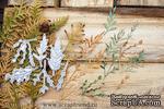 Набор ножей для вырубки от Scrapfriend - Вивьен, 6 штук - ScrapUA.com