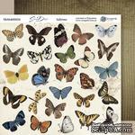 Лист двусторонней бумаги 20х20см Бабочки Some days от Scrapmir - ScrapUA.com