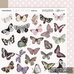 Лист двусторонней бумаги 20х20см Бабочки La Creme от Scrapmir - ScrapUA.com