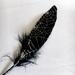 Перо черное с рисунком-паутиной, 1 штука - ScrapUA.com