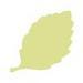 Фигурный дырокол McGill -  Birch Leaf - ScrapUA.com