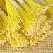 Тайские тычинки для гибискуса, мелкие светло-желтые, светло - желтые, в пучке 46-52 шт. - ScrapUA.com