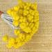 Пестики для лилии, фактурные на проволоке, цвет желтый, 5 шт. - ScrapUA.com